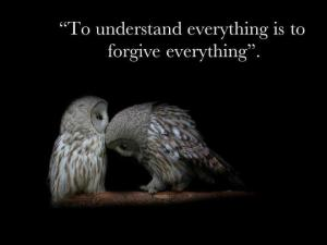 Uil forgive